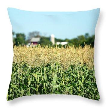 Edge Of Field Of Corn Throw Pillow