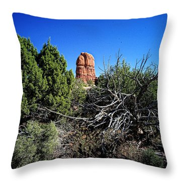 Edge Of Life Arches Throw Pillow by Lawrence Christopher