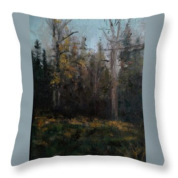 Edge Of The Woods #1 Throw Pillow by Brian Kardell