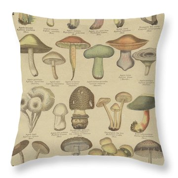 Edible And Poisonous Mushrooms Throw Pillow by French School