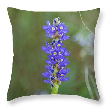 Edible Pickerel Weed Throw Pillow by Christopher L Thomley