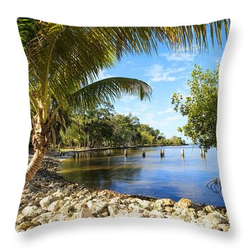 Edisons Back Yard Throw Pillow