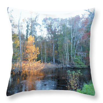 Throw Pillow featuring the photograph Edisto River by Kay Gilley