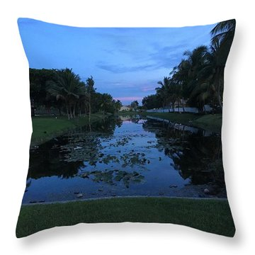 Eerie Canal Throw Pillow