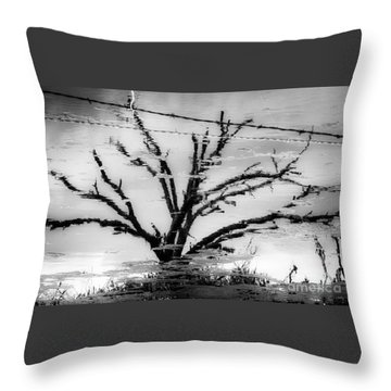 Eerie Reflections Throw Pillow