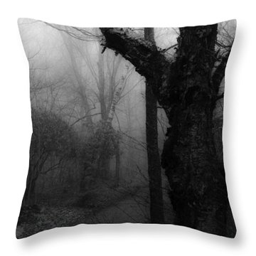 Eerie Stillness Throw Pillow