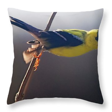 Effortless Throw Pillow by Susan Capuano