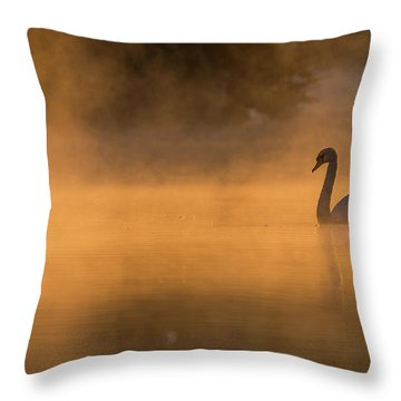Effulgent Stratford Morning Air Throw Pillow