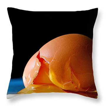 Egg Cracked Throw Pillow