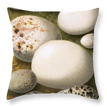 Sandpiper Throw Pillows