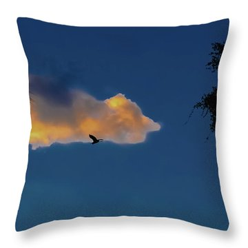 Egressing Egret Throw Pillow by DigiArt Diaries by Vicky B Fuller
