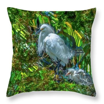 Egret And Chicks Throw Pillow