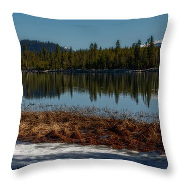 Throw Pillow featuring the photograph Egret At Lava Lake by Cat Connor