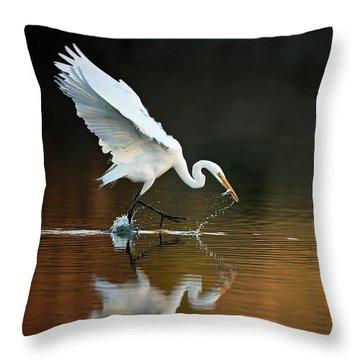 Egret At Sunset Throw Pillow