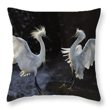 Egrets Throw Pillows
