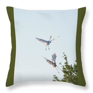 Egret Dance Throw Pillow by Catherine Lau