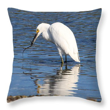 Throw Pillow featuring the photograph Egret Eating Eel 4 by William Selander
