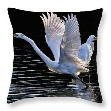 Egret Egress Throw Pillow