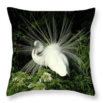 Egret Fan Dancer Throw Pillow