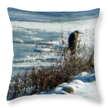 Egret Frozen Lake Throw Pillow