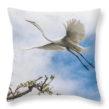 Egret Grace Throw Pillow by Kelly Marquardt