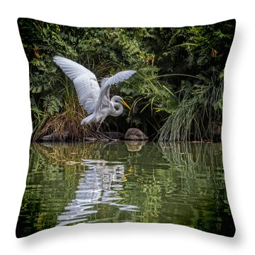 Egret Hunting For Lunch Throw Pillow