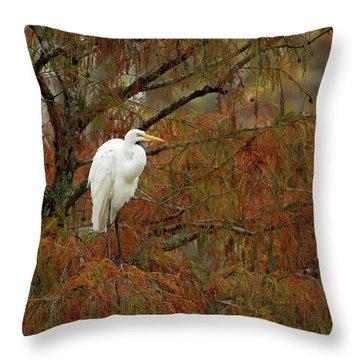 Egret In Autumn Throw Pillow