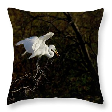 Egret Throw Pillow by Kelly Marquardt