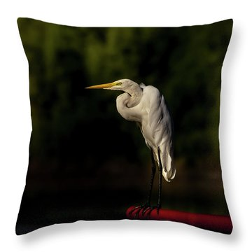 Egret On Deck Rail Throw Pillow by Robert Frederick