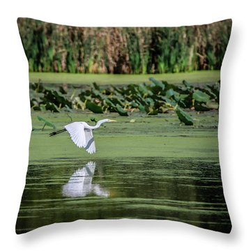 Egret Over Wetland Throw Pillow