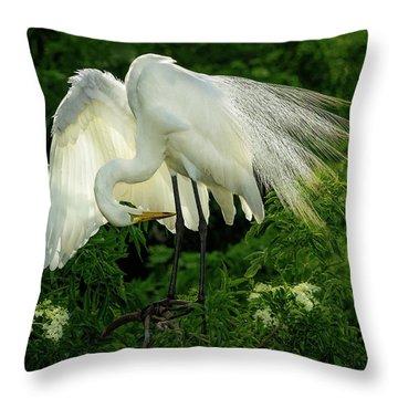 Egret Preening Throw Pillow
