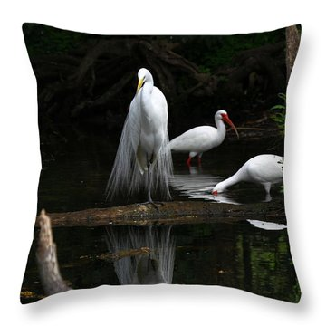 Egret Reflection Throw Pillow
