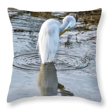 Egret Standing In A Stream Preening Throw Pillow