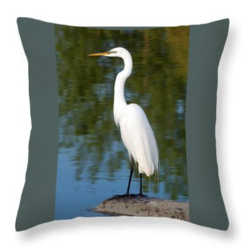 Egret Standing Throw Pillow by Kathleen Stephens