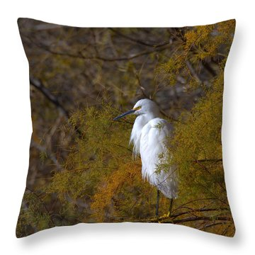 Egret Surrounded By Golden Leaves Throw Pillow