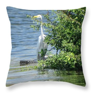 Great Egret In The Marsh Throw Pillow
