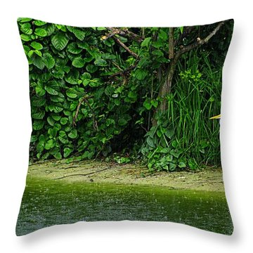 Egret Wakodahatchee Florida Wetlands Throw Pillow