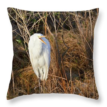 Egret With Something To Say Throw Pillow