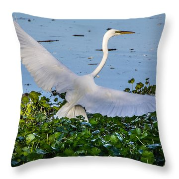 Egret With Wings Spread Throw Pillow