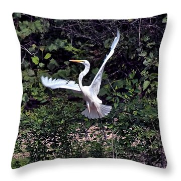 Egret X Throw Pillow by Gary Adkins