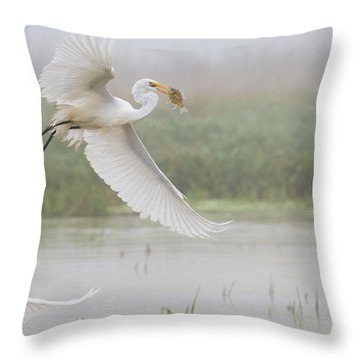 Egrets Fish Throw Pillow by Kelly Marquardt