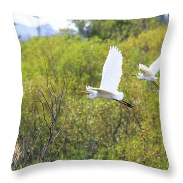 Egrets In Flight Throw Pillow by Jennifer Casey