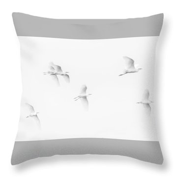 Egrets White On White B/w Throw Pillow