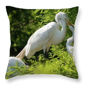 Egrets With Their Young Throw Pillow