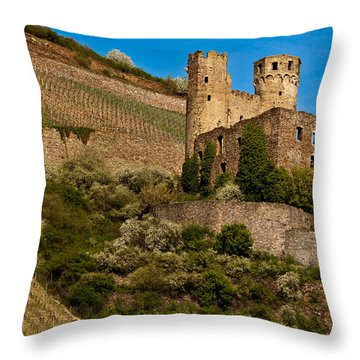 Ehrenfels Castle Ruin Throw Pillow by Jill Smith