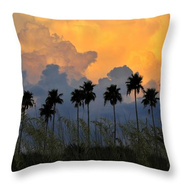 Eight Palms Throw Pillow by David Lee Thompson