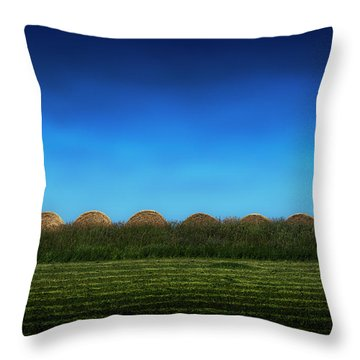 Eight Rolls Throw Pillow