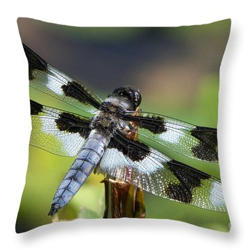 Eight-spotted Skimmer  Throw Pillow