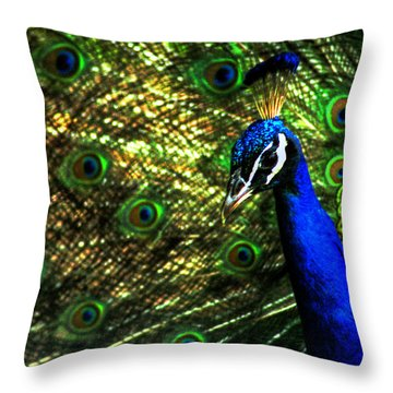 Eighteen Eyes Throw Pillow