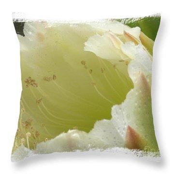 Eileen Throw Pillow by Priscilla Richardson